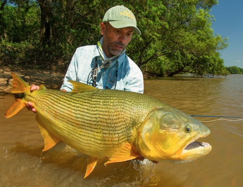 Una giornata di pesca nel Paranà